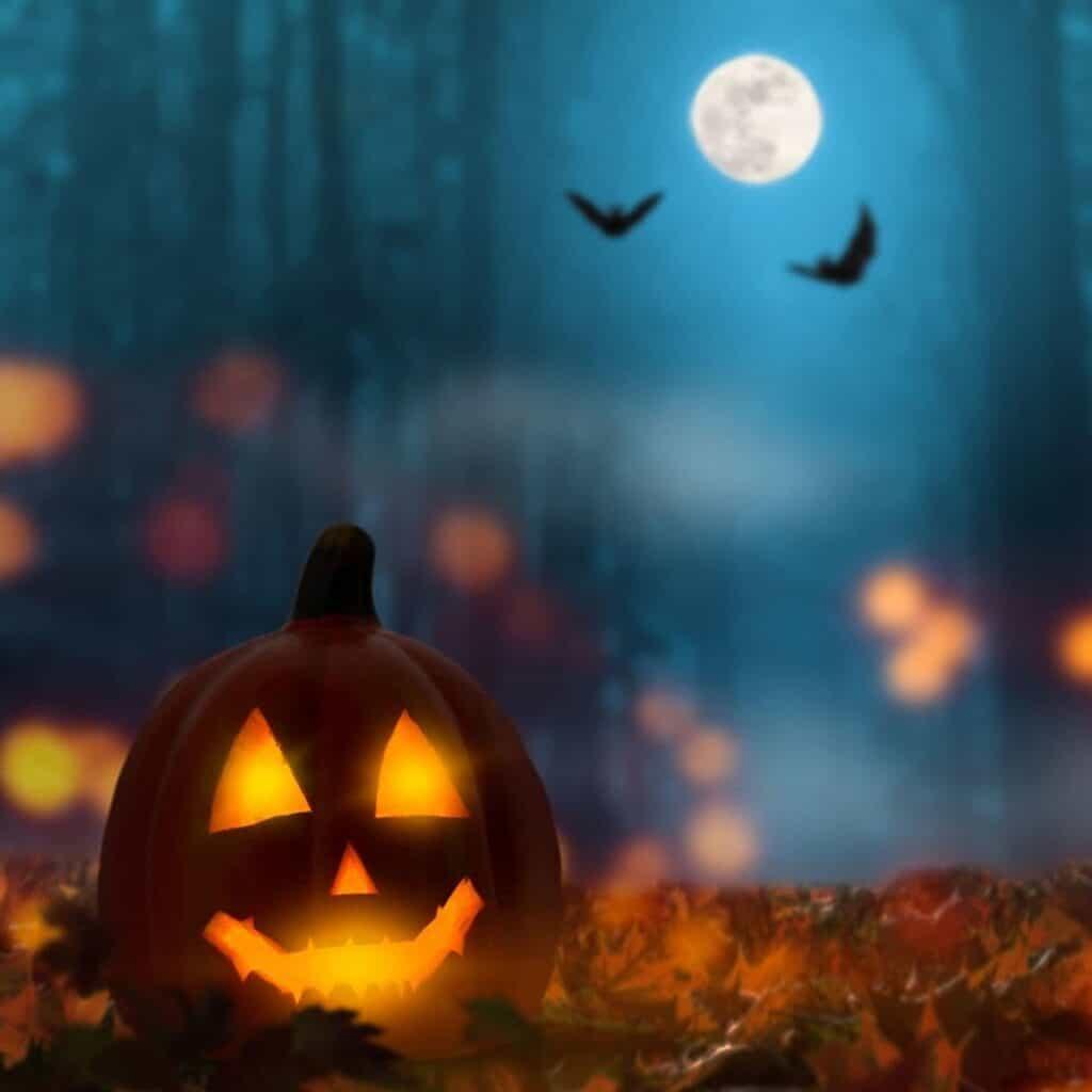 Jack-o'-lantern under the moon with bats.